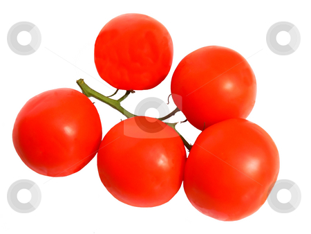 Red tomatoes    stock photo, A bunch of ripe red tomatoes still together on the stem on white background. by Horst Petzold