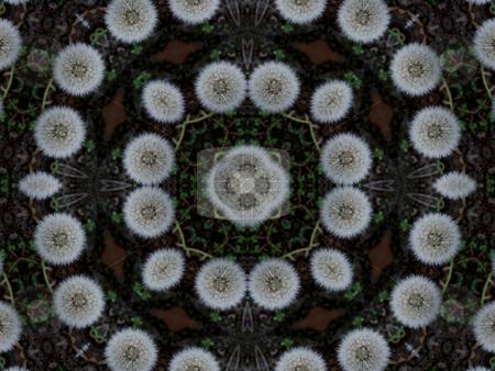 Pods (Background Pattern) stock photo, Pods (Background Pattern) by Dazz Lee Photography