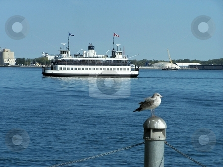 Water Ferry Crossing Lake stock photo, Large water ferry crossing lake Ontario during summer by CHERYL LAFOND