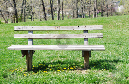 Park Bench stock photo, Old wooden park bench surrounded by yellow dandelions by Sandra Fann