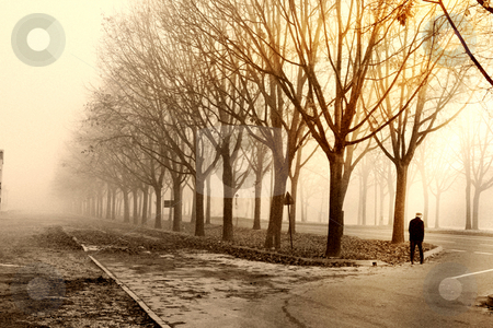 Vision nineteenth stock photo, The oldman walk in the road with the silence the morning by Mario D'Alessandro