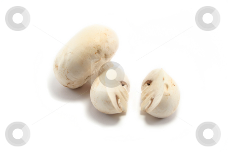 Mushrooms One Cut One Whole stock photo, Two white button mushrooms, one cut in half, the other still whole by Helen Shorey