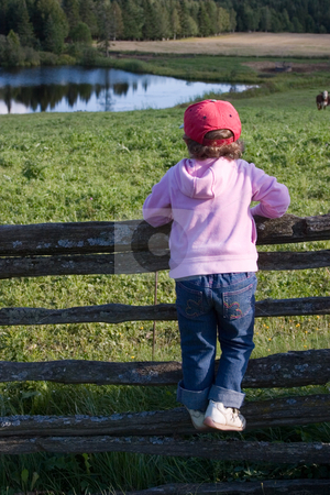 Country Girl stock photo, A little girl stares out over a farm field, while perched on a wood rail fence. by Rick Parsons