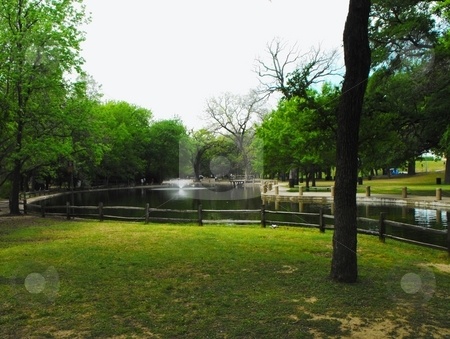 A duck pond stock photo, A duck pond in Trinity park Fort worth Texas by Robert Brown