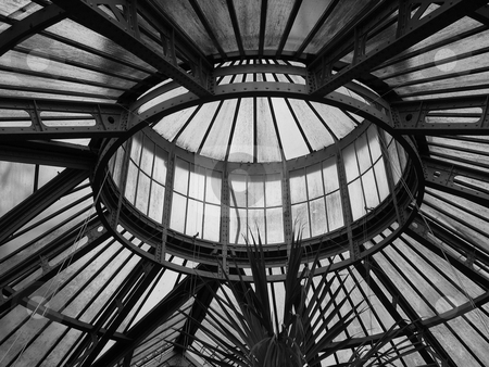 Horten Botanicus greenhouse in Amsterdam stock photo, Looking up at the top of the Horten Botanicus greenhouse in Amsterdam by Jaime Pharr