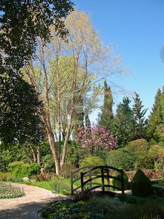 Garden in Sonoma stock photo, Garden in Sonoma by Jaime Pharr