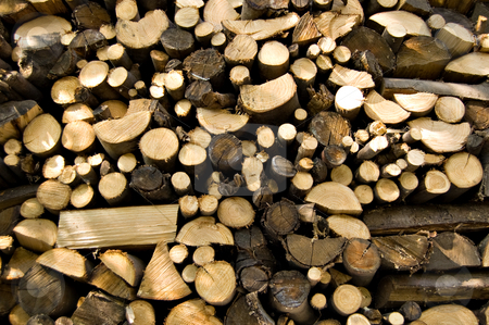 Woodpile of chestnut  stock photo, A woodpile of chestnut and beech for stoves by Roberto Marinello