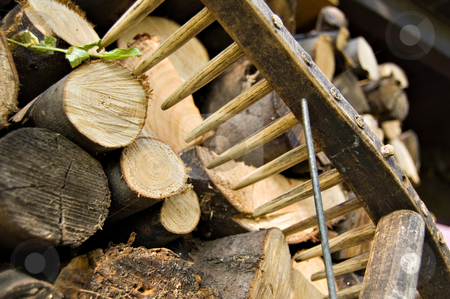 woodpile and rake stock photo, A woodpile of chestnut and beech for stoves and a rake detail by Roberto Marinello