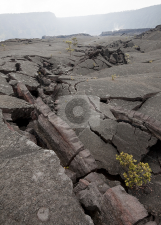 Lava Cracks stock photo, Cracks in the foggy Kilauea Iki crater, Hawaii Volcanoes National Park, Big Island, Hawaii, USA by mdphot