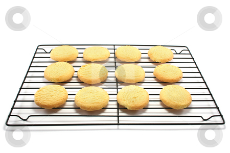 Shortbread on a Cooling Rack stock photo, Oven fresh all butter shortbread cookies on a metal cooling rack by Helen Shorey