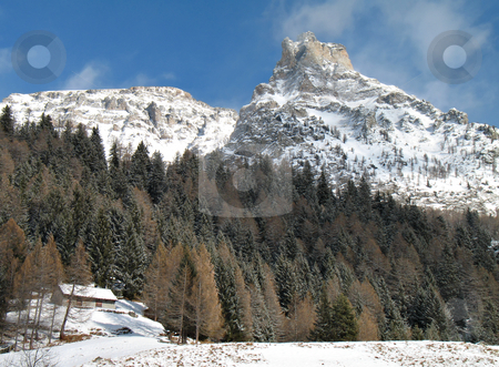 Snowy mountains and forest stock photo, Winter landscape with snowy windy rocks and green firs in val d'Ossola, Italy by Roberto Marinello