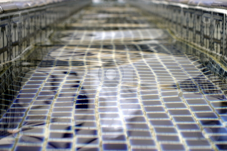 Fountain Water stock photo, Close up of water in a fountain. by Henrik Lehnerer