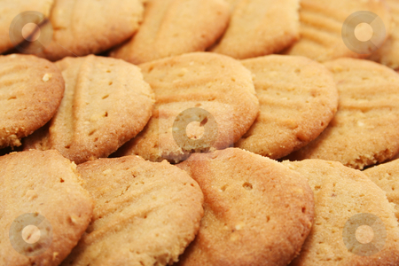 Cookie background stock photo, Golden home made peanut butter cookies - close up with shallow depth of field. by Helen Shorey