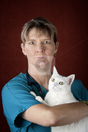 Veterinarian with Cat stock photo, Veterinarian in scrubs holding white cat with green eyes by Scott Griessel