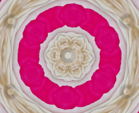 Rose Petals stock photo, Pink and beige abstract mandala resembles rose petals by Sandra Fann