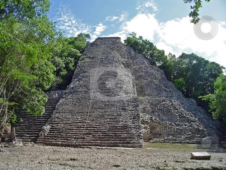 Coba pyramid stock photo, Coba mayan pyramid, Yucatan, Mexico by Roberto Marinello