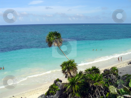 Tulum beach stock photo, The beach of Tulum, yucatan, Mexico by Roberto Marinello