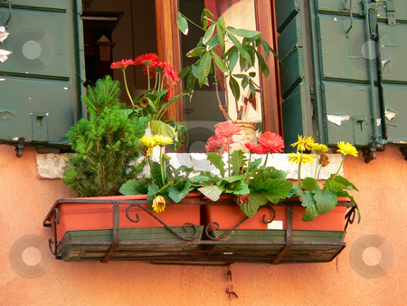 Flower box stock photo, Window box beneath a window with green shutters, on a building in venice by Casinozack