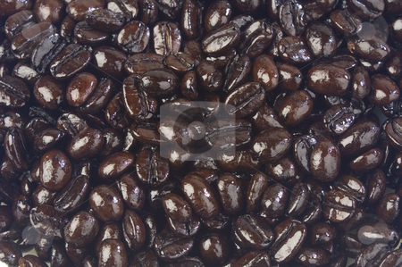 Coffee beans stock photo, Close up of fresh dark roasted coffee beans by Jonathan Hull
