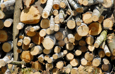 Firewood stock photo, Firewood on pile outdoor background by Julija Sapic
