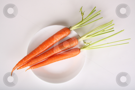 Carrots stock photo, Carrots on a dish by R Deron