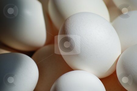 Eggs stock photo, Picture of lot of white eggs by Sarka