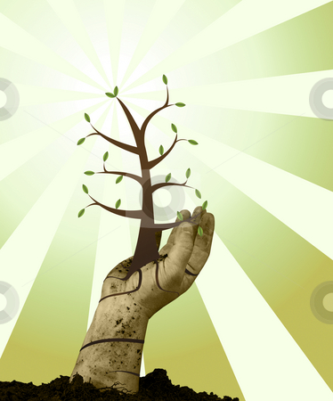 Helping Hand stock photo, Human handing helping green grow with grunge background by John Teeter