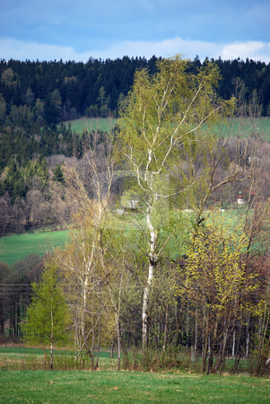 Landscape stock photo, Picture of landscape in spring by Sarka