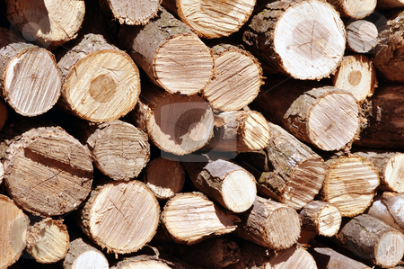 Stack of firewood  stock photo, Stack of wood, heat for the winter season by Fernando Barozza