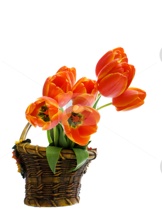 Flower basket stock photo, Bouquet of tulips in a ceramic flower basket by Steve Mcsweeny
