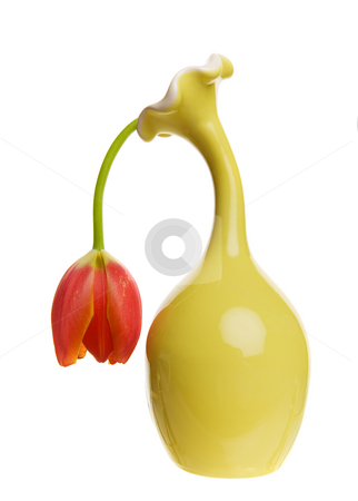 Limp tulip stock photo, A dying and depressed looking tulip in a yellow vase by Steve Mcsweeny