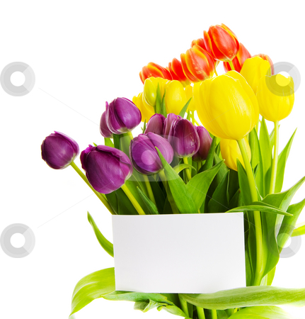 Tulip gift stock photo, Bouquet of  tulips with a blank gift card by Steve Mcsweeny
