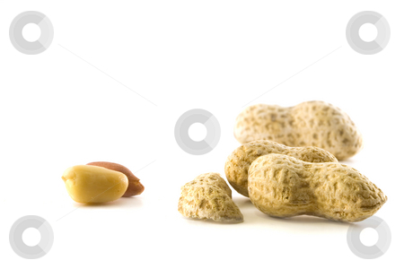 Peanuts stock photo, Peanuts on a white background shelled and unshelled by Steve Mcsweeny