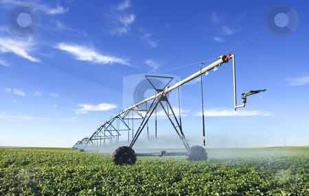 Pivot stock photo, Modern irrigation tool by Steve Mcsweeny