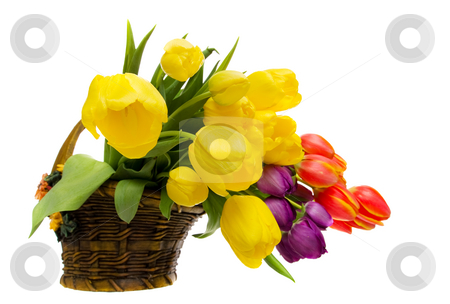 Flower arrangement stock photo, Tulip flower arrangement in a basket by Steve Mcsweeny