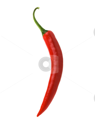 Isolated red chili pepper stock photo, A single red hot chili peppers over white by Steve Mcsweeny