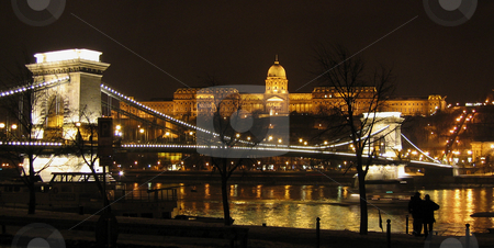 Budapest Chain Bridge and royal palace stock photo, Budapest Chain Bridge and royal palace at night by Alessandro Rizzolli