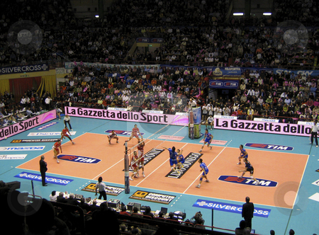 Volleyball - Piacenza vs Cuneo stock photo, Italian national volley cup final between Piacenza and Cuneo - The teams in action by Alessandro Rizzolli