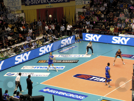 Volleyball - Piacenza vs Cuneo stock photo, Giba serves during the final game of the Italian Volley national cup between Cuneo and Piacenza by Alessandro Rizzolli