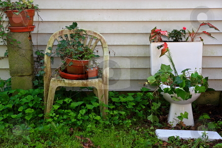 Recycled Green stock photo, Items that are no longer needed made useful in a garden by Jack Schiffer