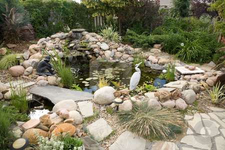Water Feature stock photo, A large water feature turns a small backyard into a delightful summer retreat. by Brenda Carson