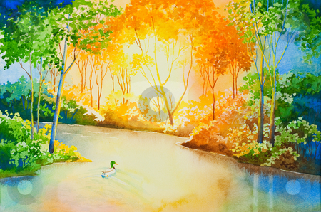 River of Gold stock photo, A mallard duck floating down a river, illuminated by the setting sun.  An original watercolor. by Brenda Carson