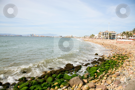 Puerto Vallarta Shore stock photo, The Malecon & shore of downtown Puerto Vallarta, Mexico by Brenda Carson