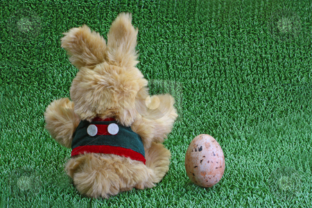 Easter rabbit stock photo, Cute easter rabbit on green grass meadow by Birgit Reitz-Hofmann