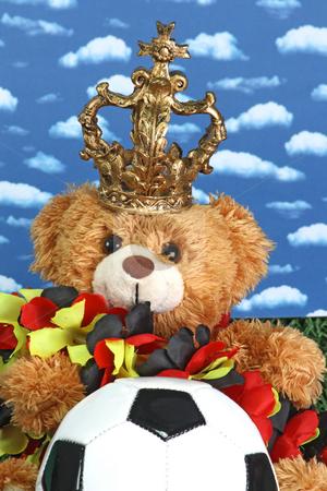 Soccer stock photo, Cute teddy bear with a soccerball onb right background by Birgit Reitz-Hofmann