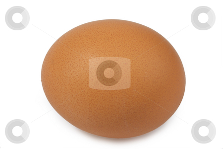 Brown egg stock photo, One brown egg with feather on bright background by Birgit Reitz-Hofmann