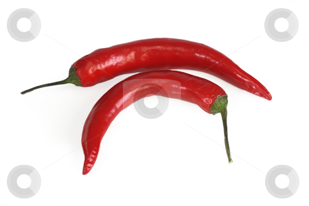 Red chili pepper stock photo, Red chili pepper on white  background by Birgit Reitz-Hofmann