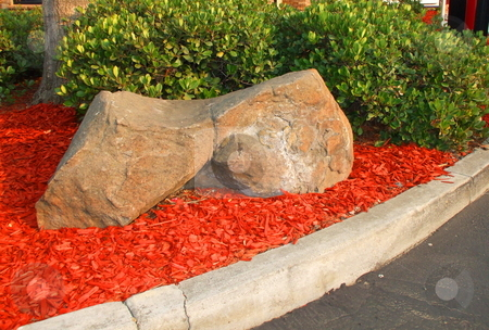 Redwood Mulch stock photo,  by Michael Felix