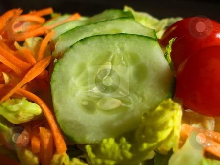 Fresh Vegetable Salad stock photo,  by Michael Felix