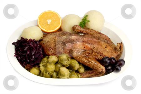 Duck dinner_2 stock photo, Roasted duck dinner on bright background by Birgit Reitz-Hofmann